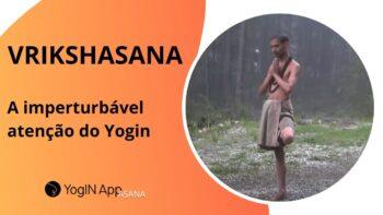 Vrikshasana - a imperturbavel atencao do yogin