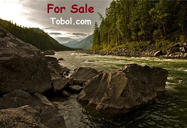 tobol.com for sale