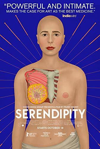 Serendipity (2019)