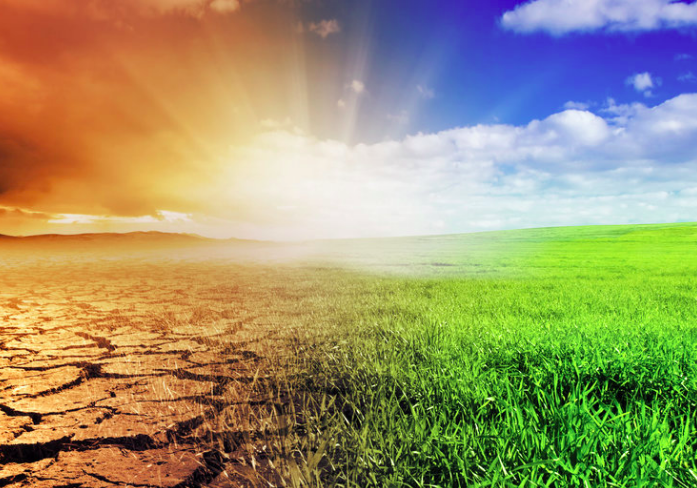climate anxiety: the organizational and managerial implications