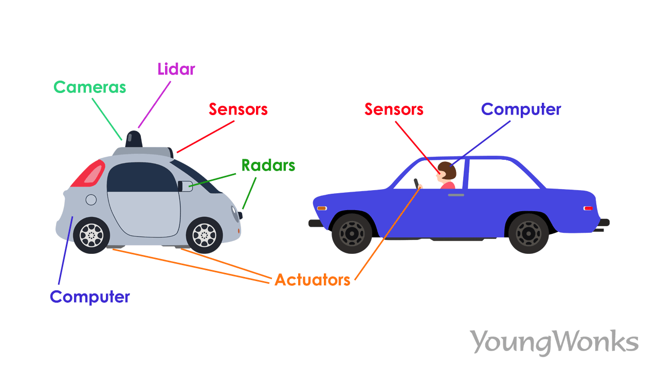 Self-driving car vs traditional car