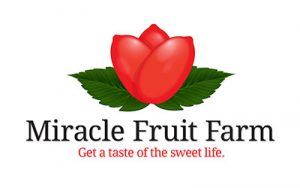 Miracle Fruit Farms - by Orlando Logo Designer Ocasio Consulting