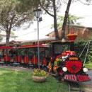 Rails Line Theme Park Train