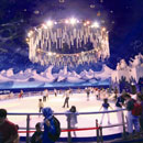 Design Snow Play Grounds and Ice Rinks