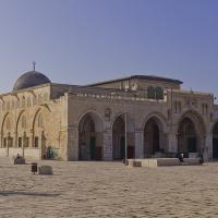 صورة رمزية لـ أبوإبراهيم
