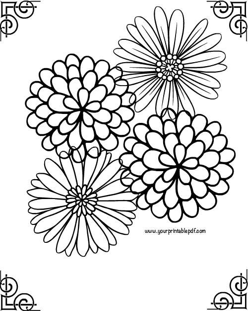 Relaxing Framed Flower Adult Coloring Page
