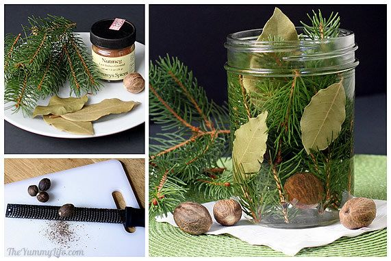 Make this wonderfully natural homemade air freshener out of Fragrant Twigs Bay leaves Nutmeg