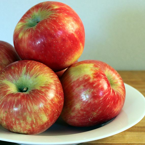 Comparing Apples To Apples The Best For Eating Cooking