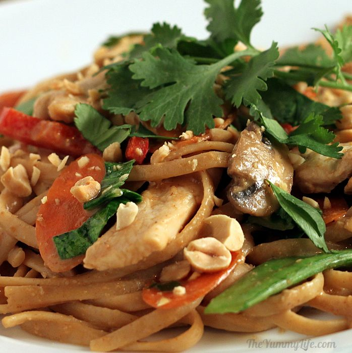 Asian Peanut Noodles with Chicken and Vegetables | The Yummy Life