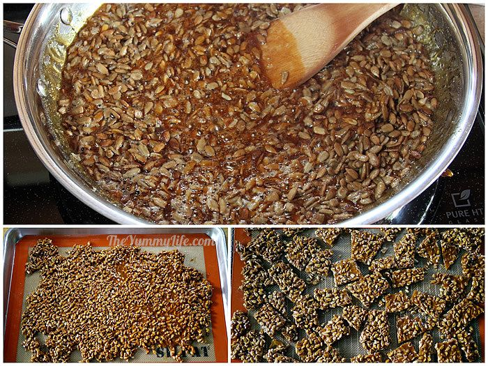 SunflowerSeedBrittle4.jpg