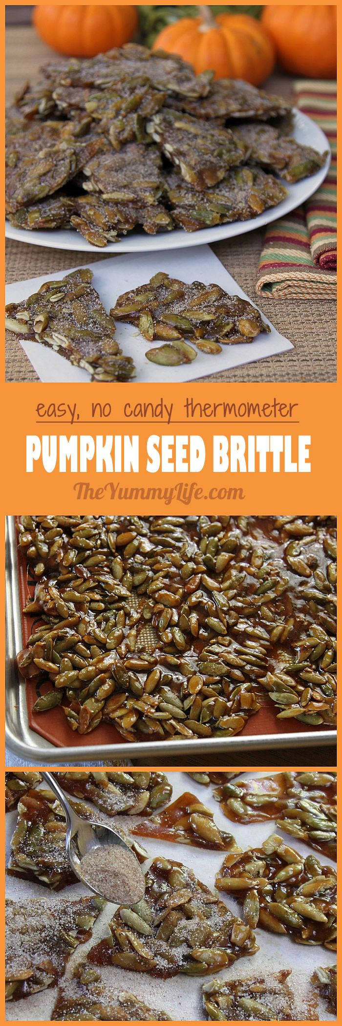 Easy Pumpkin Seed (Pepita) Brittle. Dusted with pumpkin pie spice, deliciously sweet and salty, no candy thermometer needed. From TheYummyLife.com.