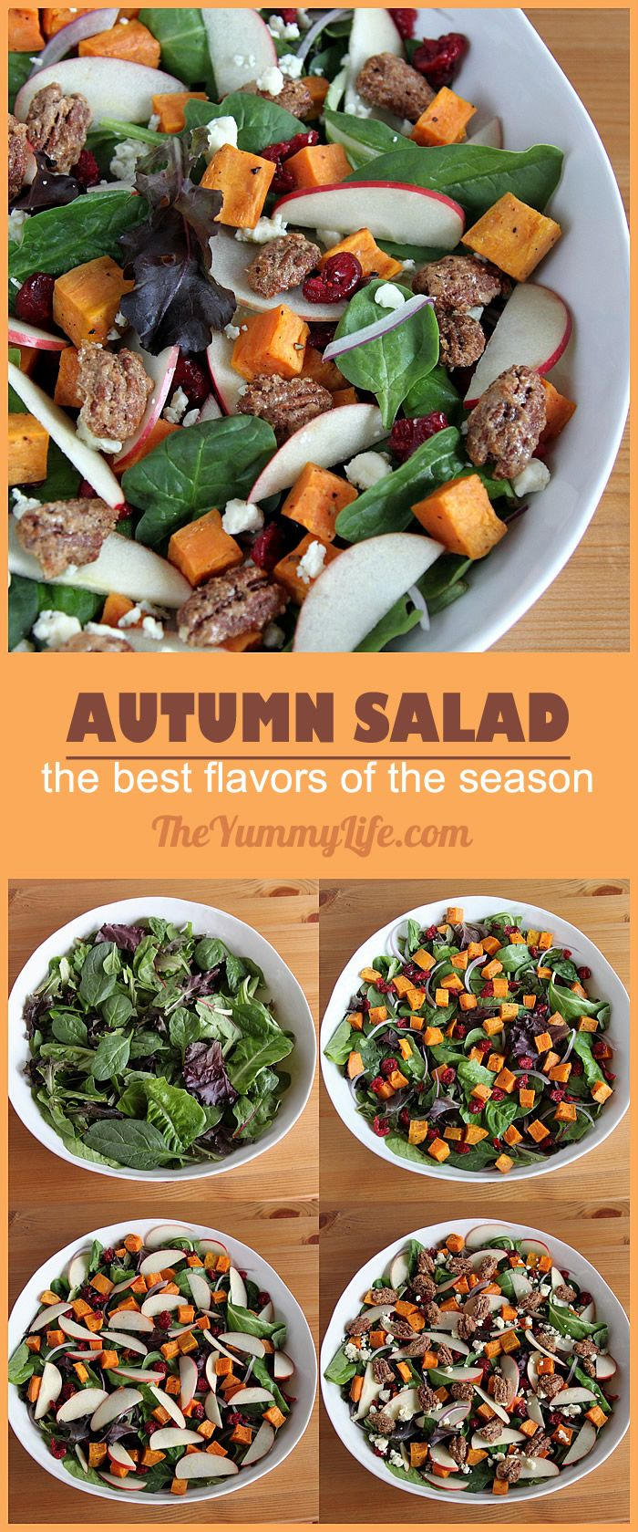 BEST OF AUTUMN SALAD. Roasted sweet potatoes, apples, cranberries, candied pecans and greens make this healthy, tasty combo ideal for Thanksgiving and holiday menus. From TheYummyLife.com