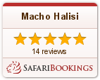 Reviews about Macho Halisi