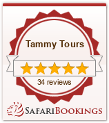 Reviews about Tammy Tours