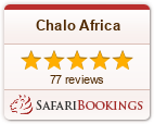 Reviews about Chalo Africa