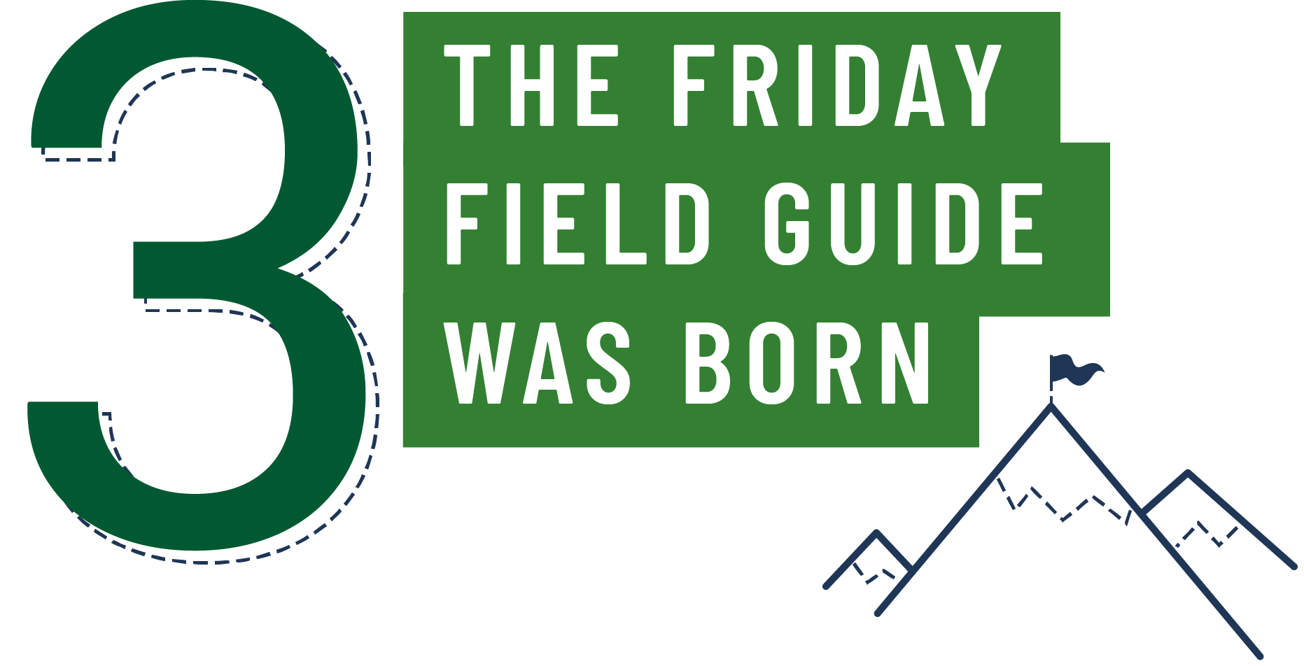 3. The Friday Field Guide was born