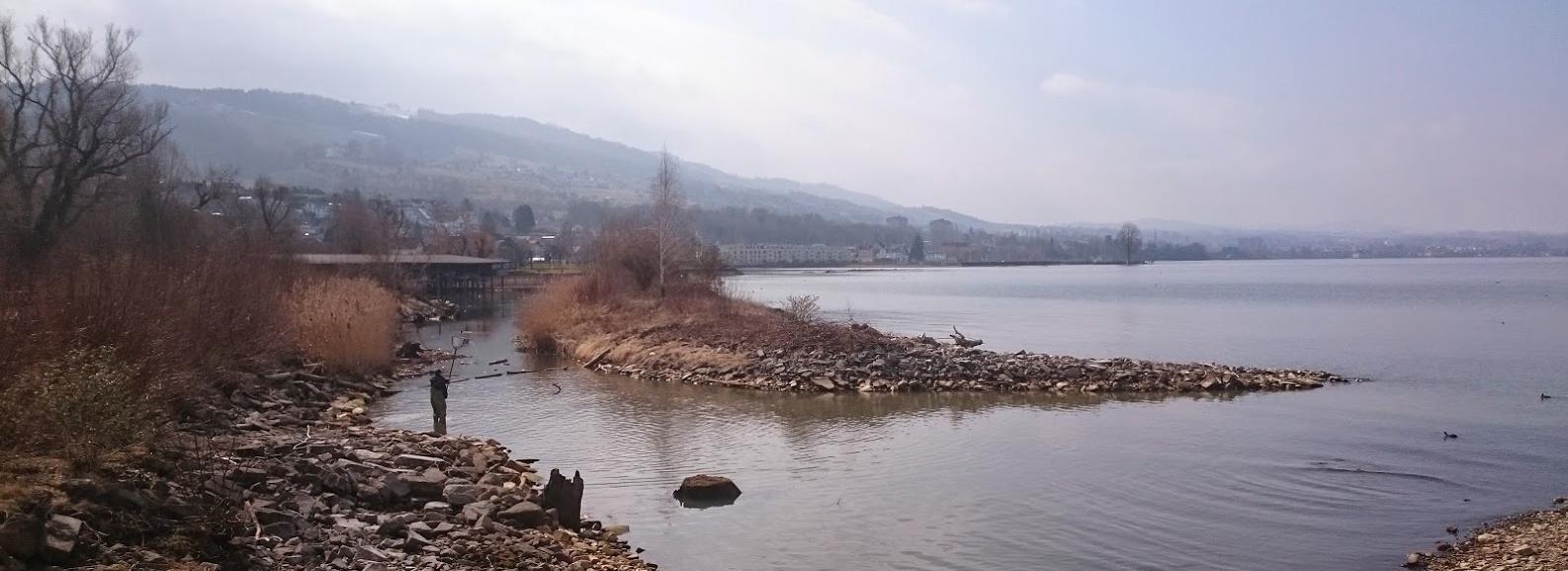 Lake Constance shoreline