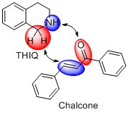 The concerted reaction between THIQ and the chalcone
