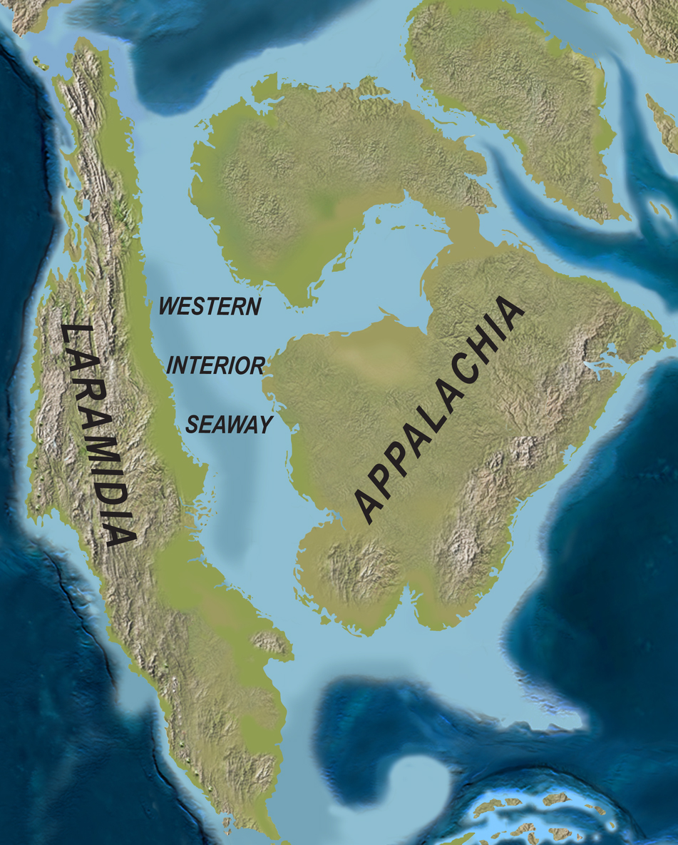 North America Palaeogeography during the Campanian