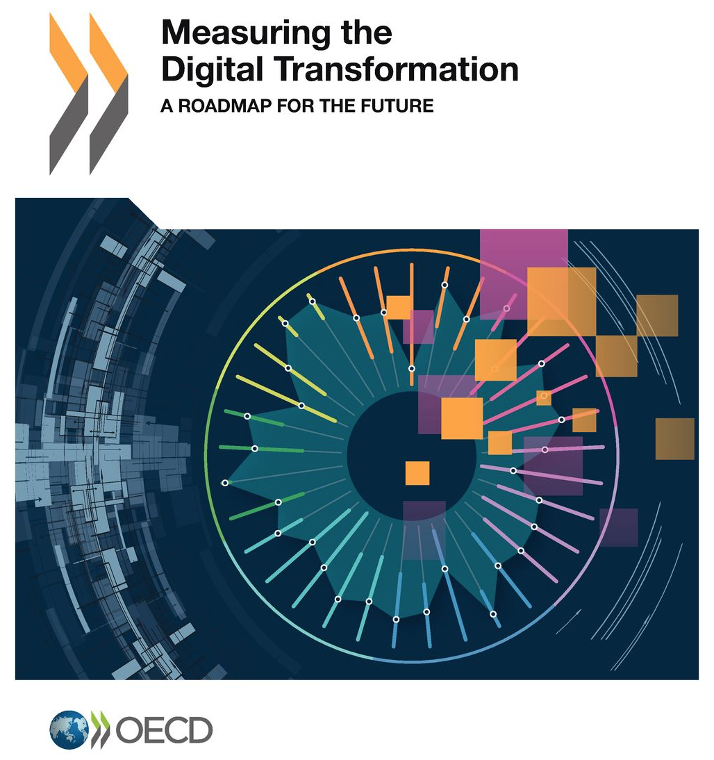 Measuring the Digital Transformation: A Roadmap for the Future