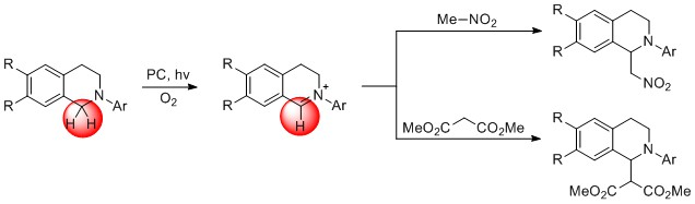 Functionalization of N-aryltetrahydroisoquinolines