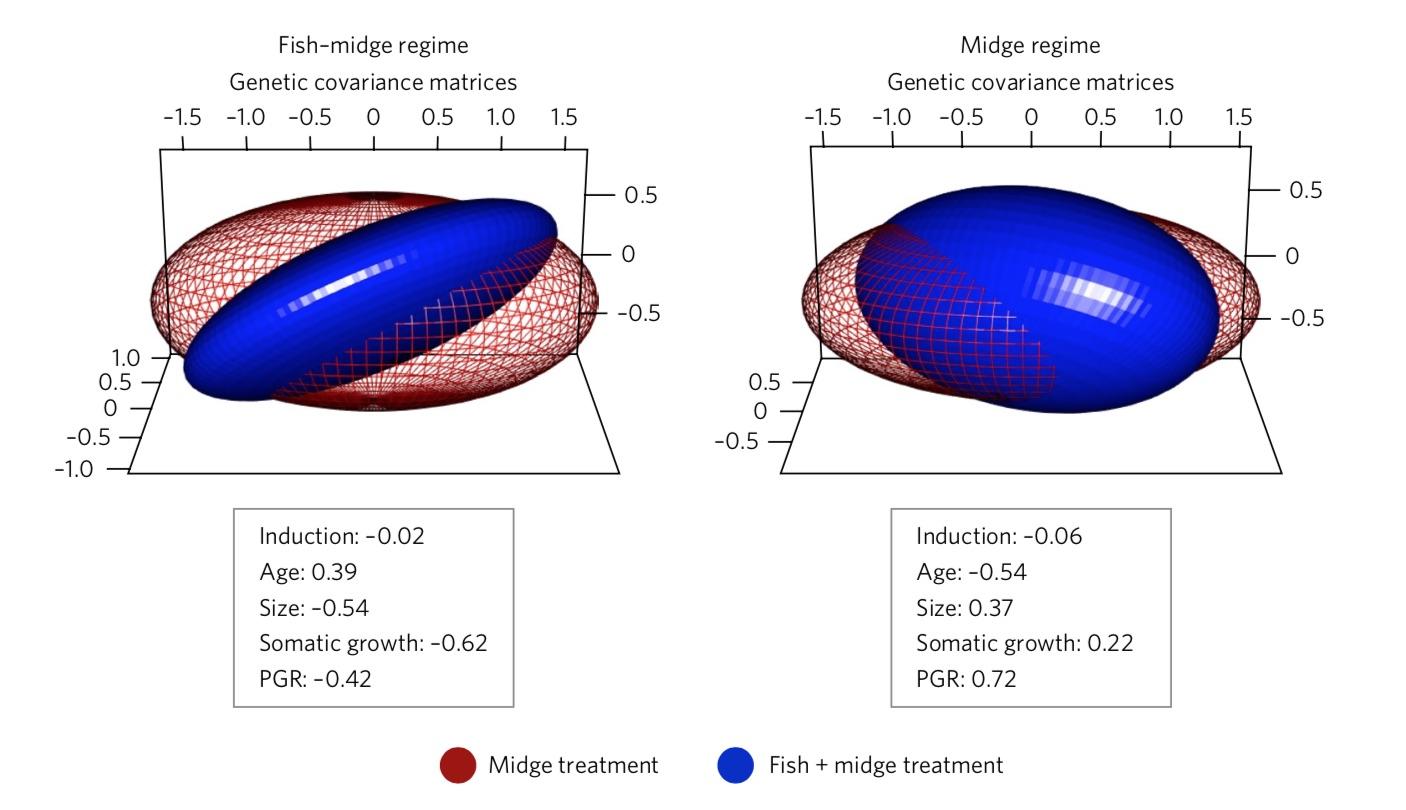 Multivariate Plasticity