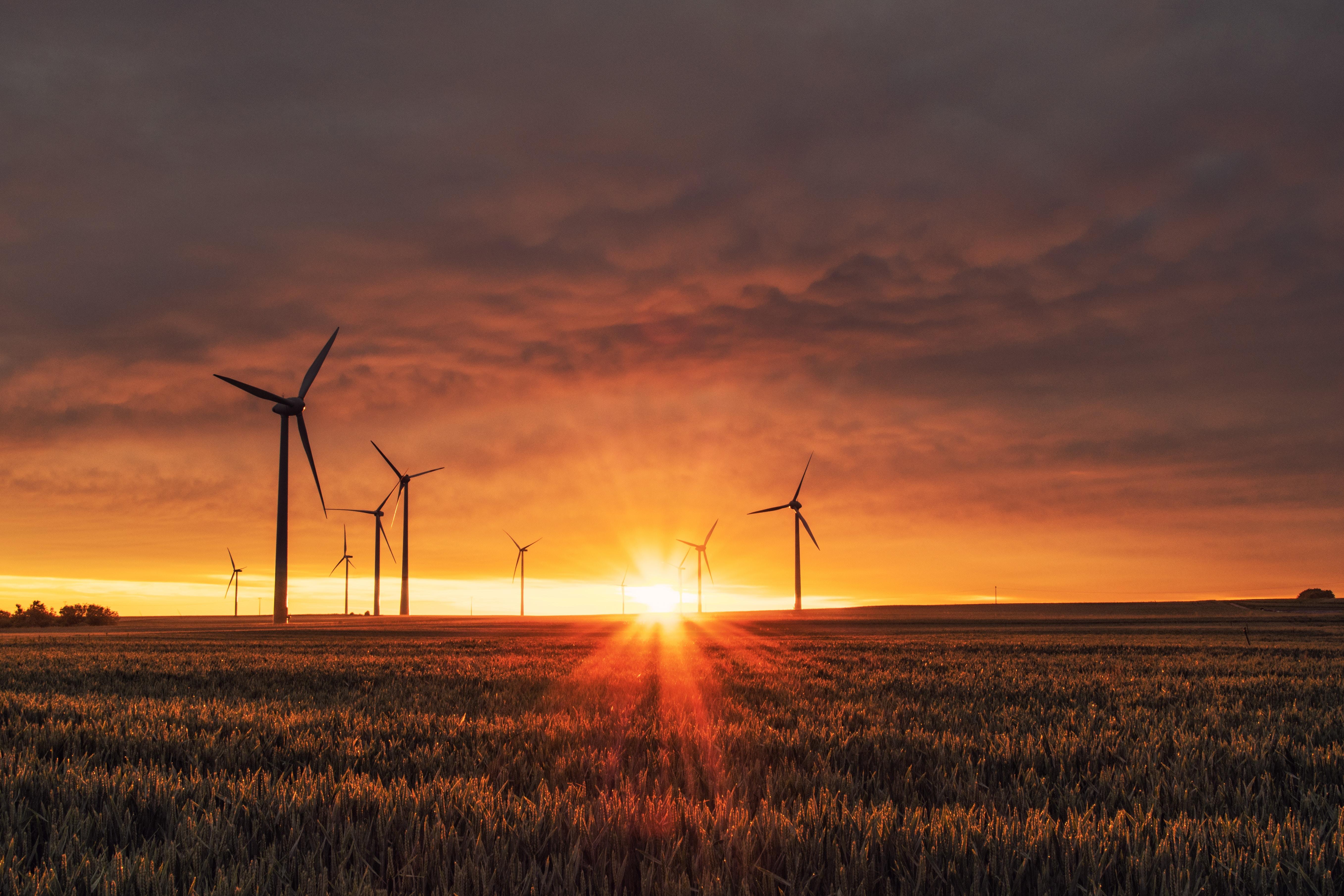 La finance durable face à ses défis: perspectives d'un acteur clé