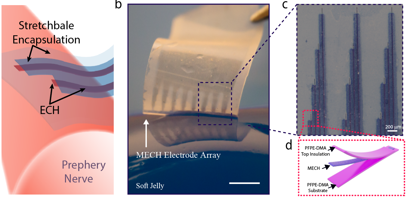 Jelly-like microelectronics for neuromodulation