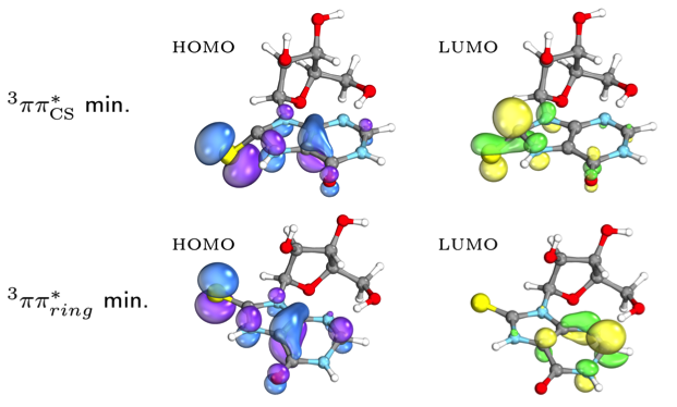 Photochemical properties of 8-mercapto-arabino-inosine.