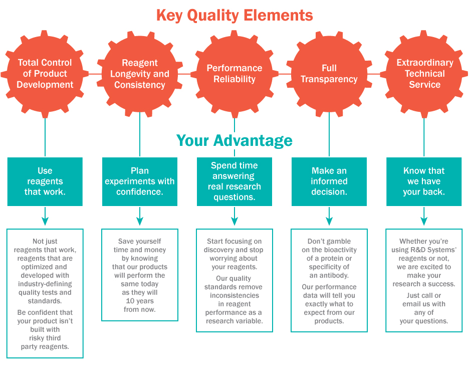 Key quality elements