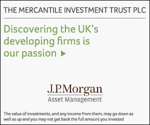 Read moe about The Mercantile Investment Trust