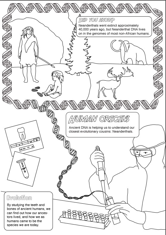Adventures in archaeological science: A colouring book for young ...