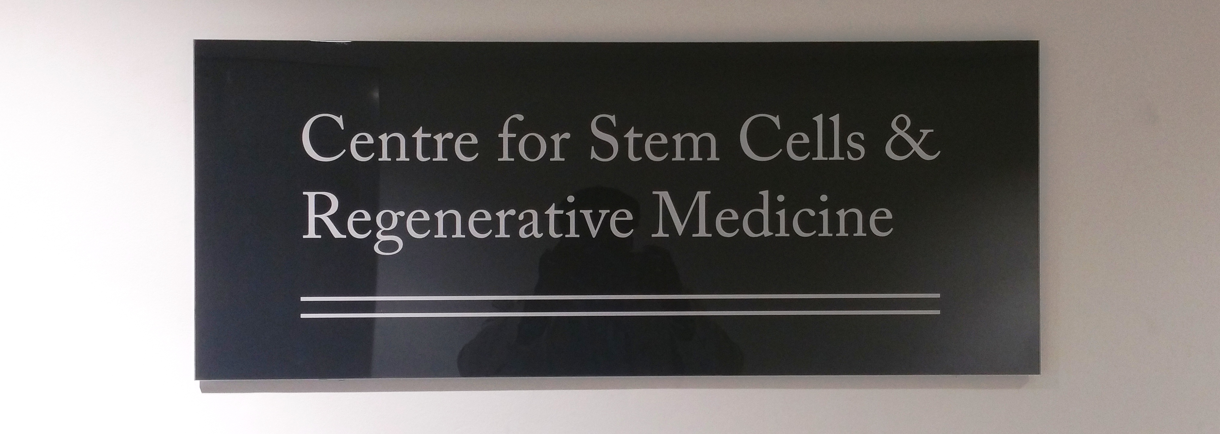 Introduction to KCL's Centre for Stem Cells and Regenerative