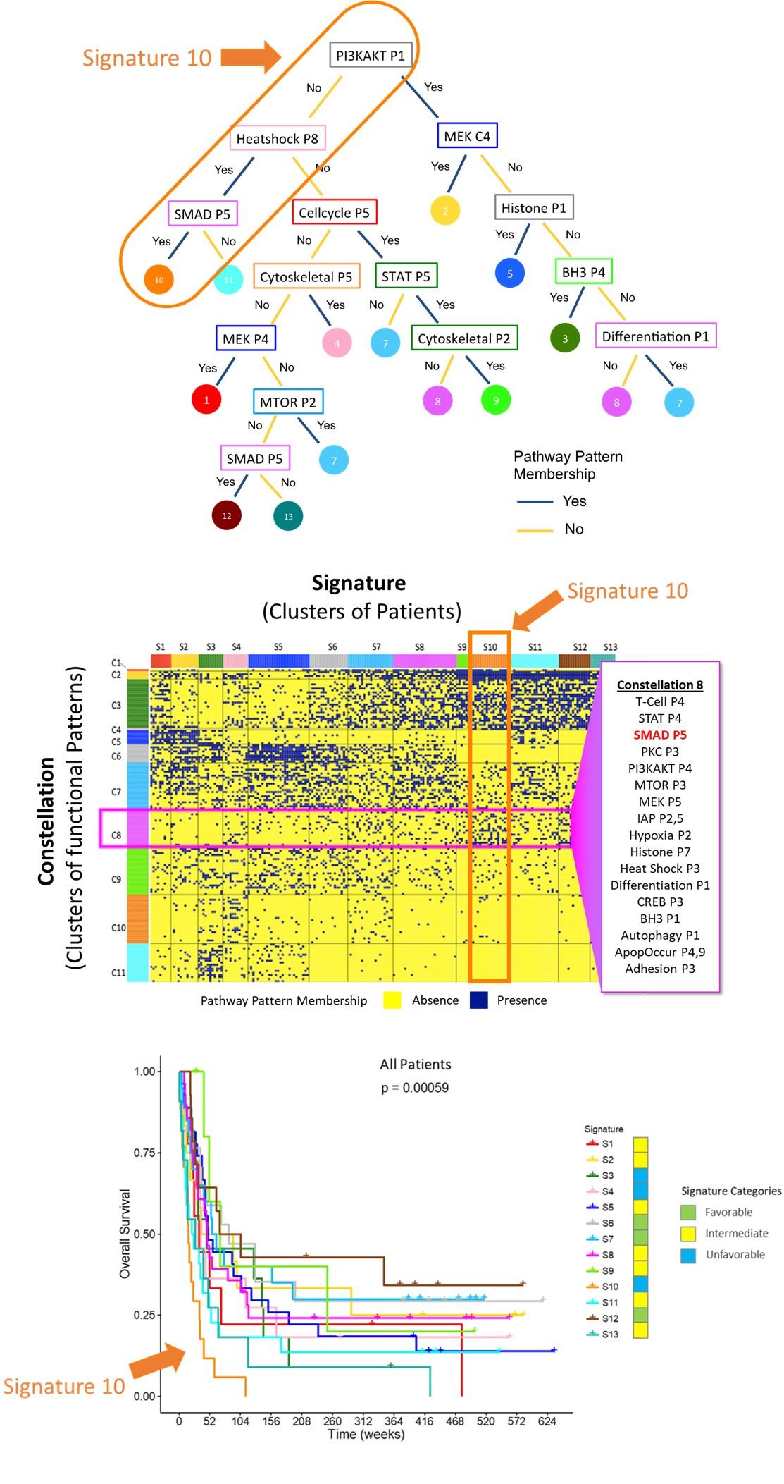 Identifying Leukemia Hallmarks.