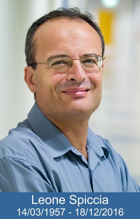 Professor Leone Spiccia
