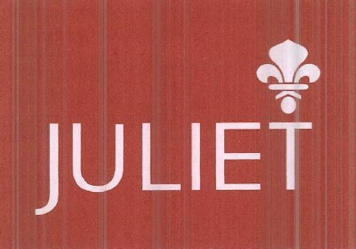 juliet apparels ltd zauba juliet apparels ltd