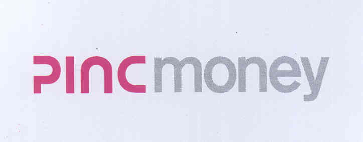 PINC MONEY(LABEL)