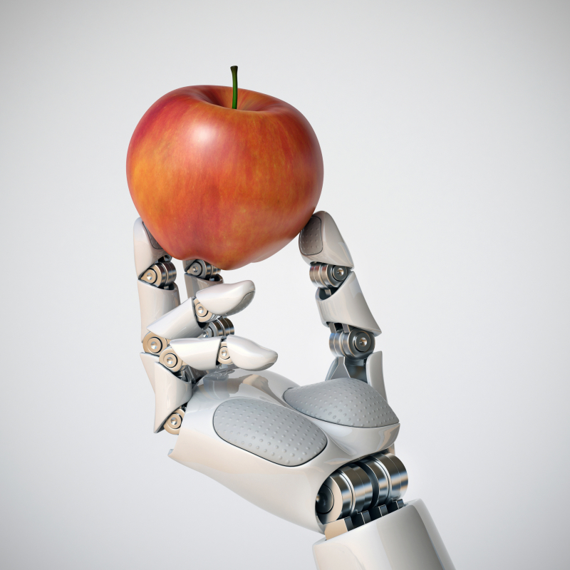 Artificial Intelligence and Your Food