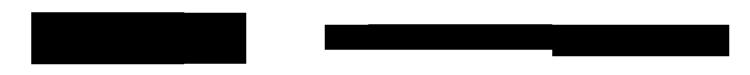 logo-lapai