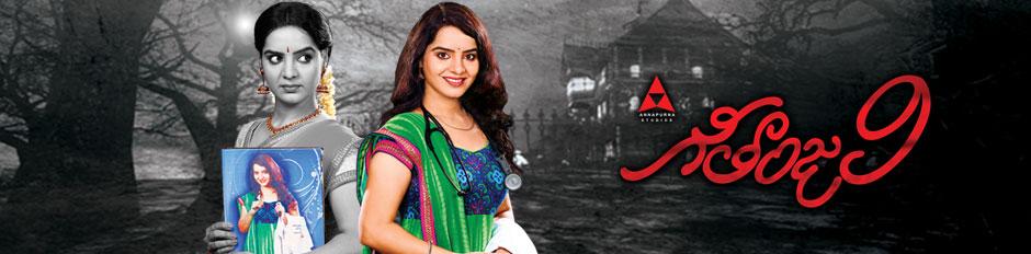 Zee Telugu USA Official Website: Zee Telugu Shows & Serials