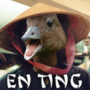 Enting_130