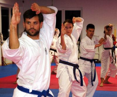 Martial-Arts-as-Self-Defense-Karate-Families