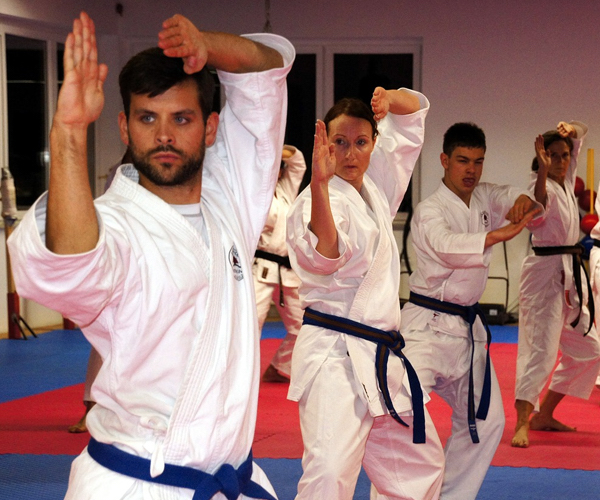 Martial Arts as Self-Defense