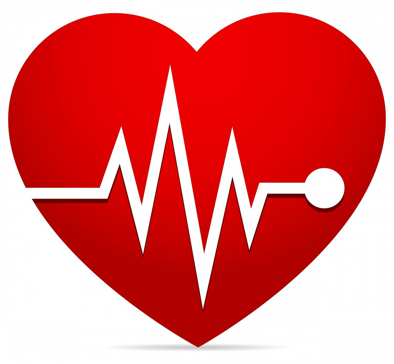 The Science of Heart Rate Zones