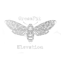 CrossFit Elevation  Logo