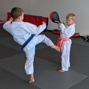 Children practice Taekwondo kicks