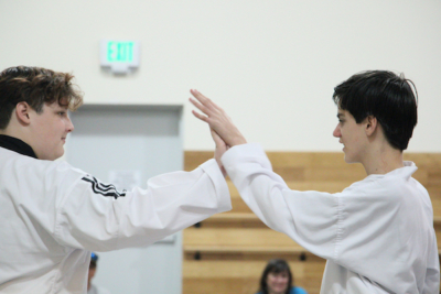 Stick-to-Your-2020-Martial-Arts-Goals-The-Way-Family-Dojo