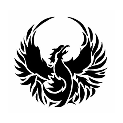 CrossFit Phoenix 815 Testimonial