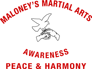 Maloney's Martial Arts Logo
