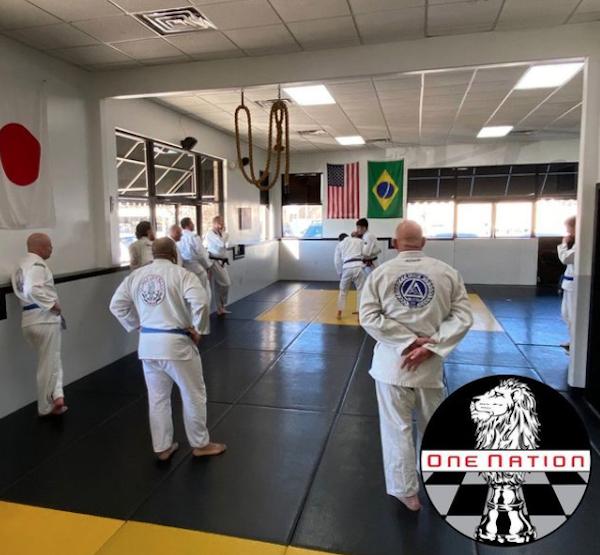 Jiu Jitsu Should Be Mandatory for Law Enforcement | One Nation Jiu Jitsu